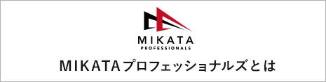 MIKATA プロフェッショナルズとは